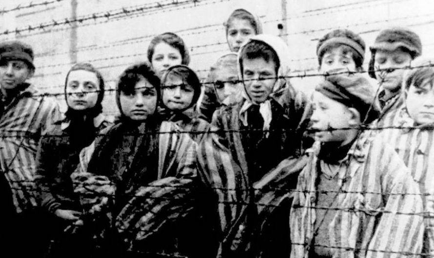 Nie wieder Faschismus