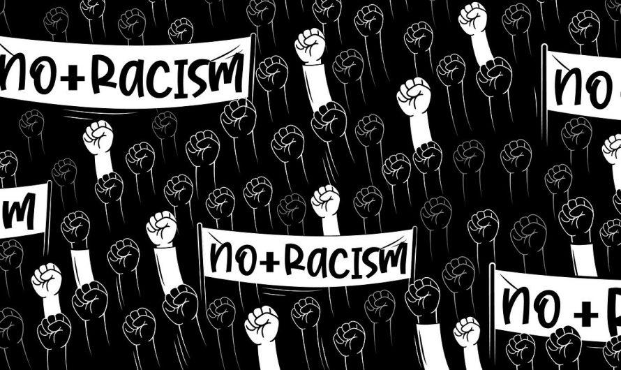 Die Lösung des Rassismus liegt im Arbeiterkampf
