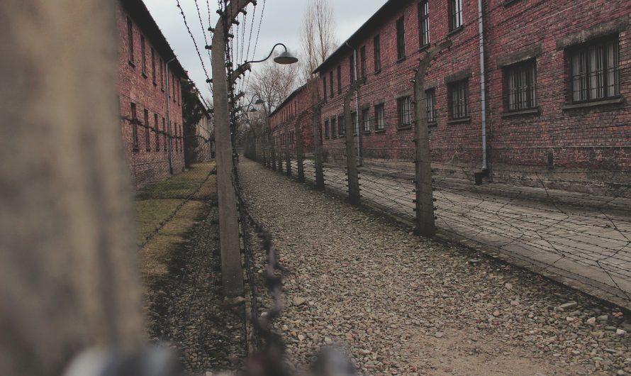 Georg Elser: der Tischler, der fast Hitler tötete